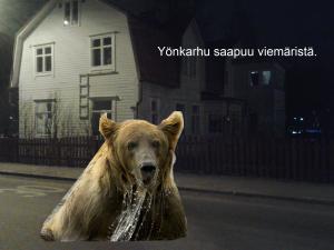 kai-yonkarhu